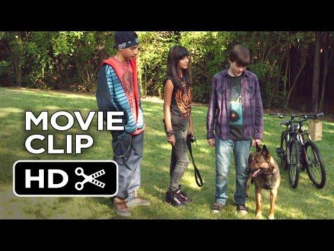 Max Movie CLIP - Air Jordan of Dogs (2015) - War Dog Drama HD