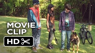 Max Movie CLIP - Air Jordan of Dogs (2015) - War Dog Drama HD