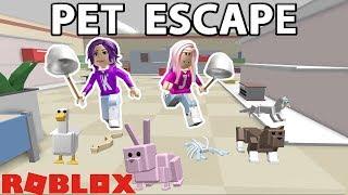 PETS ARE FLEEING THE PET STORE! CAPTURE THEM! / Roblox: Pet Escape 🐶🐰🐱