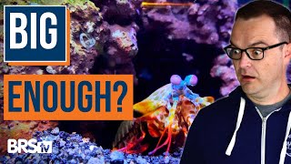 Aquarium Styles, Shapes, and Sizes: The Ultimate Beginner Guide Part 4
