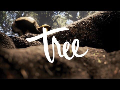 Tree VR – Seedling