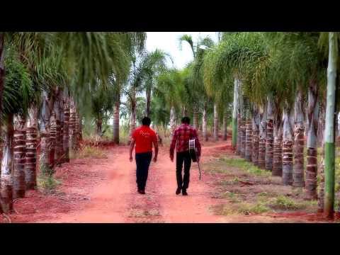 Chico Amado e Xodó -  Recordações- DVD 2012