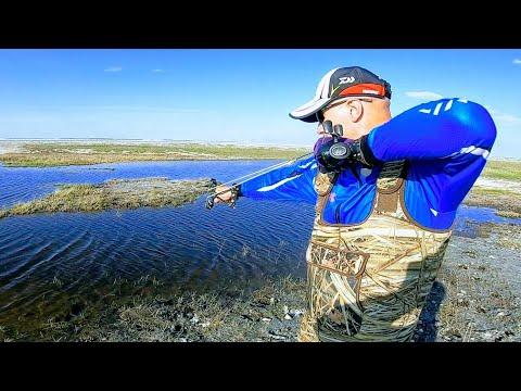 Рогатка для рыбалки НАРЕЗКА лучших выстрелов Самая лучшая рогатка Это рыбалка или охота ЕКЛМН???
