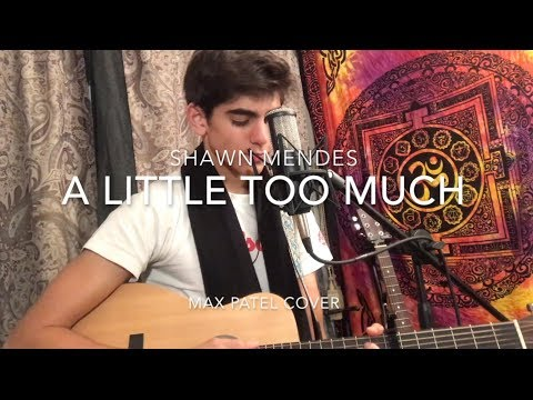 A Little Too Much ~ Shawn Mendes || Max Patel Cover