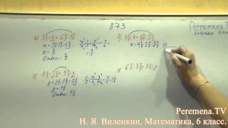 Виленкин, Математика, 6 класс, задача 873