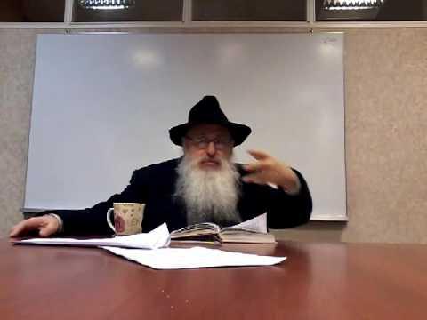 Energia oculta- Comida Kosher -  Tania Capitulo 8