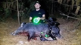 Hog Hunt at Night with The Green Kill Light Motion Sensor Feeder Light