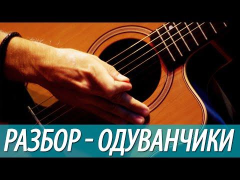 Разбор, аккорды песни - Одуванчики (бой, перебор)