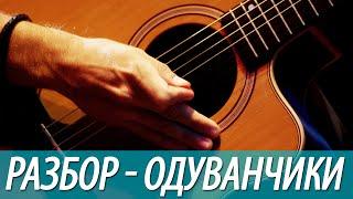 Разбор, аккорды песни Одуванчики (бой, перебор)