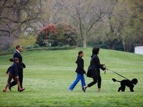 The Obamas' New Dog