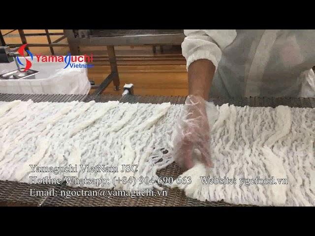 Rice Pho noodle production line 300 kg/h