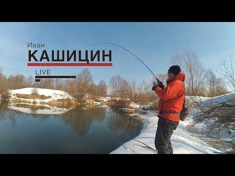#LiveSL N3. Иван Кашицин. Зимний спиннинг.