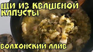 ЩИ из квашеной капусты со свининкой. Рецепт от Волхонского.