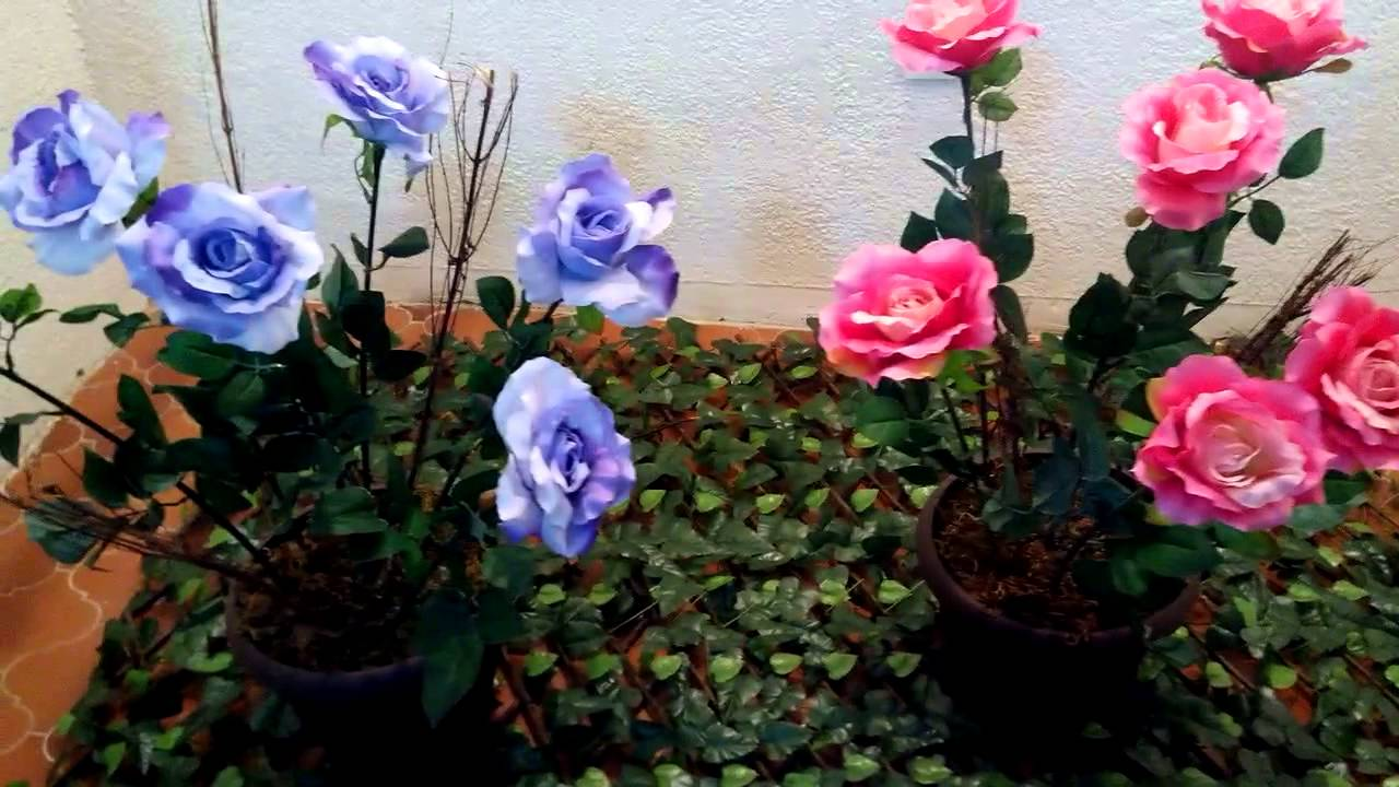 Seda rosales en macetas artificiales youtube - Rosales en macetas ...