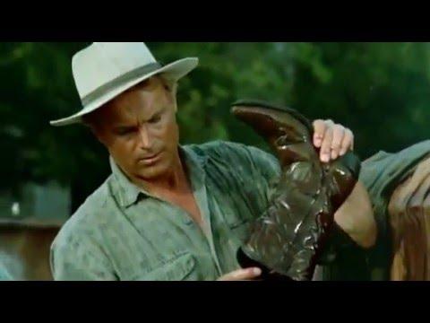 RENEGADE ,Un osso troppo duro – film completo [Commedia]