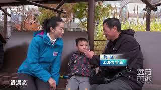 [远方的家]长江行 公共休闲空间 美丽杨浦滨江| CCTV中文国际