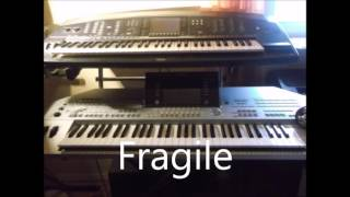Fragile Albano Romina Power Cover KEYBOARD Sylvia Schmiedt