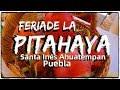 Video de Santa Ines Ahuatempan