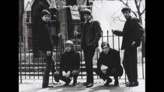 The Rolling Stones ~ Paint It Black  (HQ)