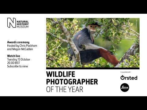 Wildlife Photographer of the Year Awards 2020
