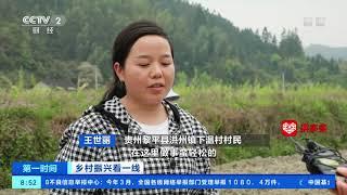 [第一时间]乡村振兴看一线 贵州黎平:香芋产业为乡村振兴注入新动能  CCTV财经 - YouTube