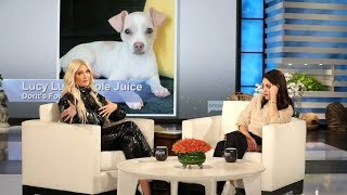 Erika Jayne Gives Her Opinion on 'PuppyGate' and If Lisa Vanderpump Will Return to 'RHOBH'