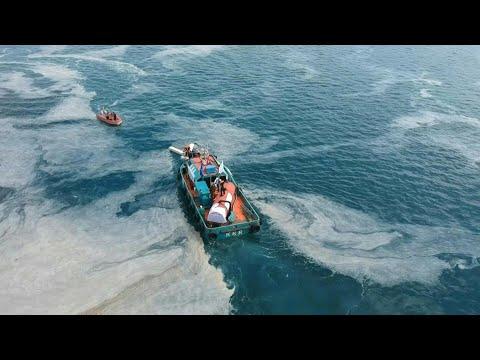 Kampf gegen 'Seerotz' im Marmara-Meer   AFP