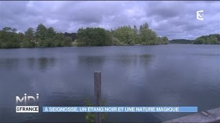 A Seignosse, un étang noir et une nature magique