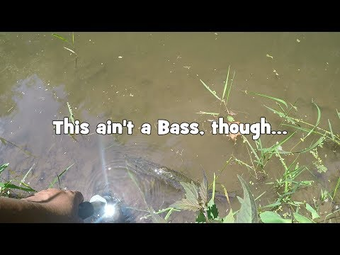 A BEGINNER Bass angler's GOOD SETUP+LURE (Yardley, PA)