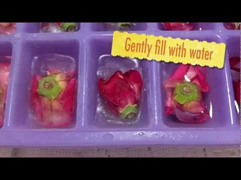 How To Make Fresh Floral Ice Cubes