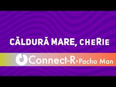 Connect-R ft. Pacha Man - Mare caldura (MIDIOTS Rework)