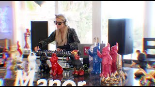 Paris Hilton's Animal Haven Gala DJ Set