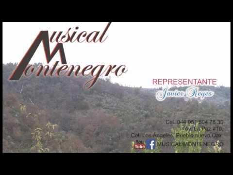 La cumbia sampuesana- Musical Montenegro