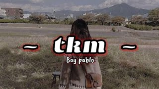 [ SUB INDO ] Boy Pablo - TKM   Lyrics Video Terjemahan Indonesia  