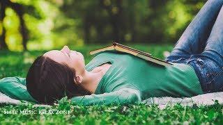 Música Para Dormir Profundamente | Liberar Preocupaciones, Canción De Cuna Bebes, Anti Insônia ✿S08