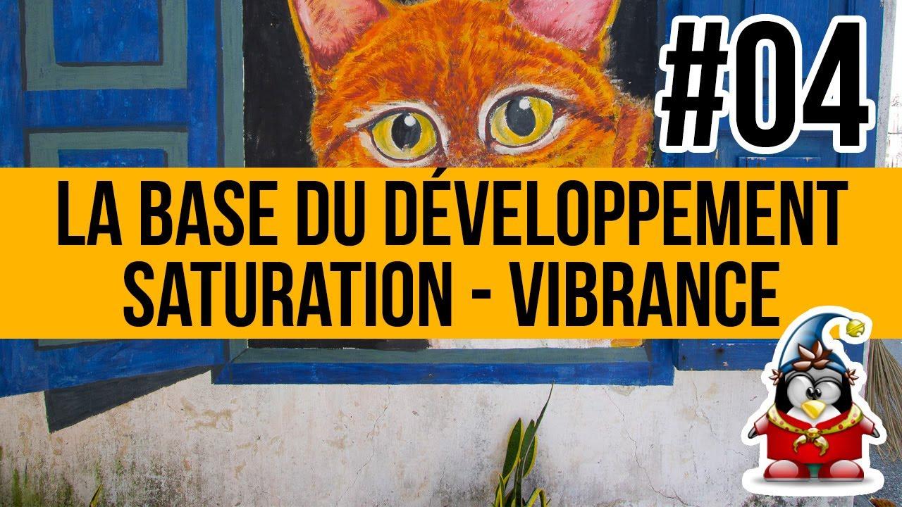 La base du développement - 04 - la saturation et la vibrance