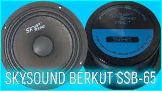 Среднечастотные динамики SKYSOUND BERKUT SSB 65, распаковка, обзор, прослушка