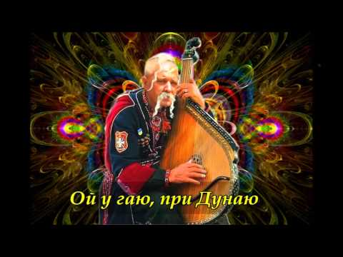 Ой у гаю, при Дунаю   Ukrainian folk song   Рушничок