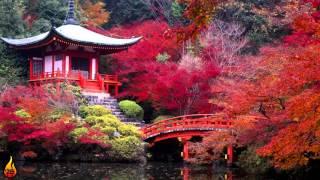 1 Hour Japanese Music | Japanese Zen Music, Relaxing Asian Music ♫399