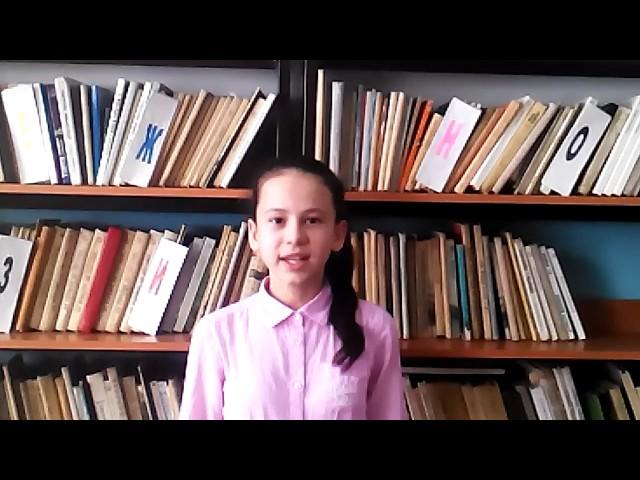 Изображение предпросмотра прочтения – ЭльвираШайхутдинова читает отрывок изпроизведения «Железная дорога» Н.А.Некрасова
