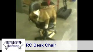 Oscar on a Remote Control Desk Chair at SuperDroid Robots