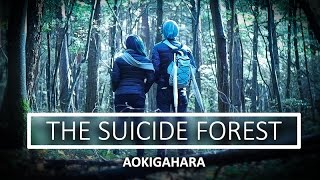 INTO THE SUICIDE FOREST
