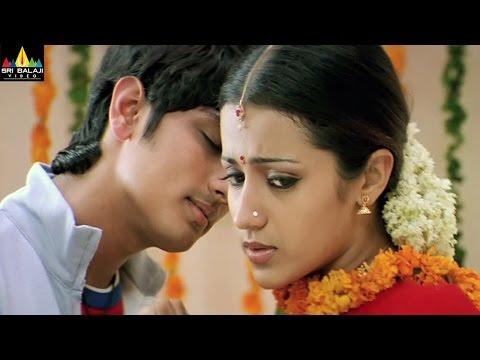 Nuvvostanante Nenoddantana Love & Drama Scenes | Siddharth, Trisha