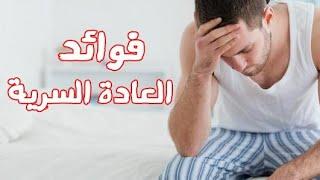 رامى عادل / العادة السرية مفيدة!