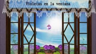 Video Violetas en la Ventana  AudioLibro ( Es un libro espírita) download MP3, 3GP, MP4, WEBM, AVI, FLV Mei 2018