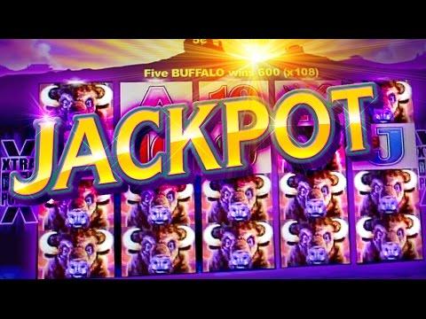 HUGE BUFFALO JACKPOT !!!  5c Aristocrat Video Slots - San Manuel Buffalo