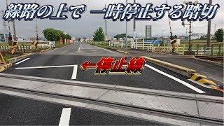 【珍スポット】線路の上で一時停止する踏切が岐阜にあったw【列車が来たらアウト】