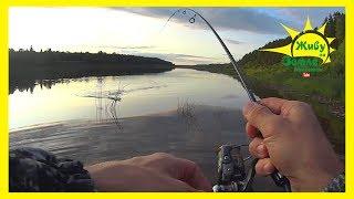 Мини спиннинг радует! Рыбалка на щуку была успешной.