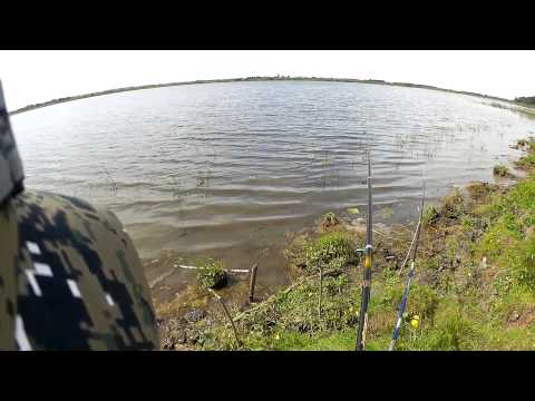 ловля карася в свердловской области видео