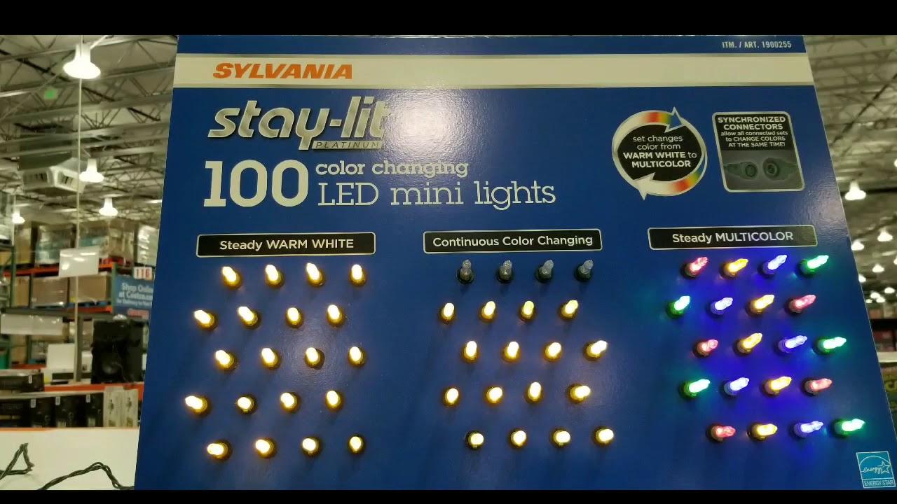 brand new 9ad57 59798 Costco! 100 LED Mini Christmas Lights! $10 to $14!!!